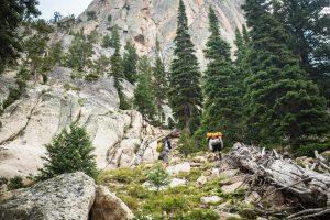 Hiking, Elephant's Perch, Near Stanley, Idaho. Photo Credit: Idaho Tourism